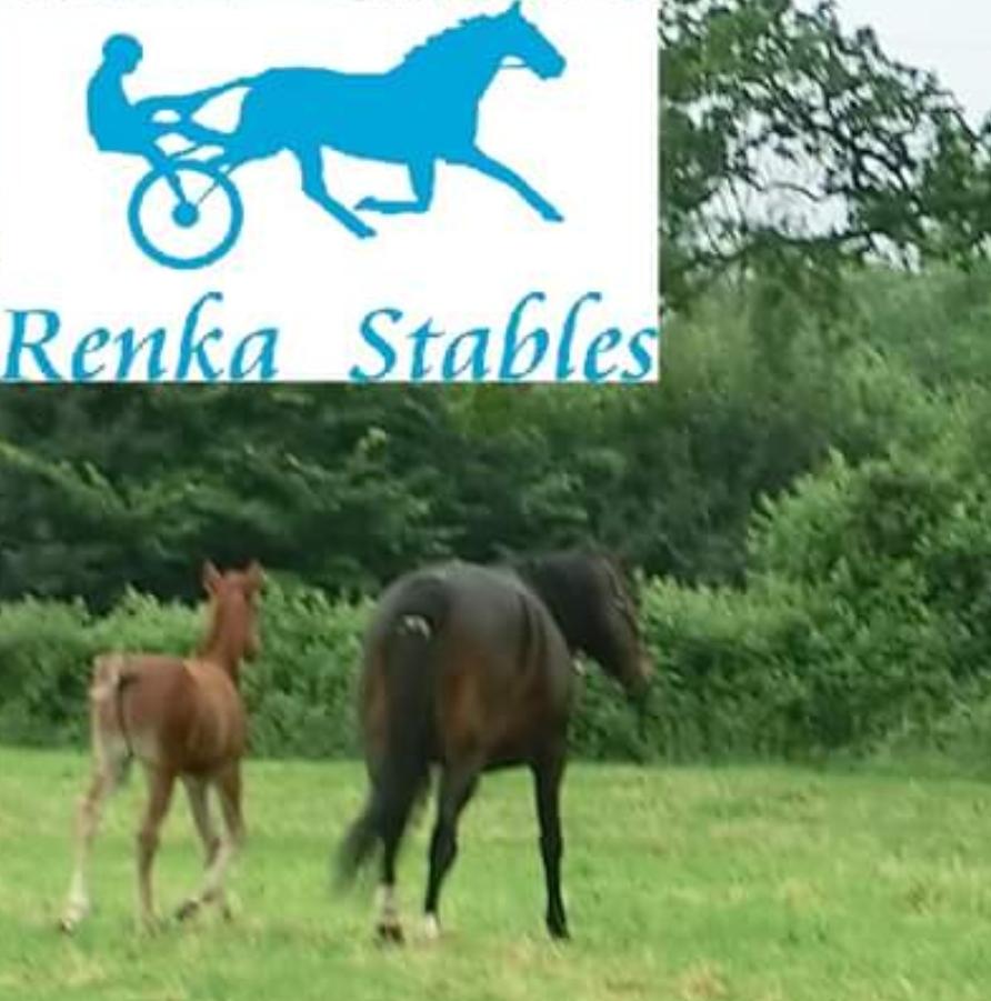 RENKA Stables